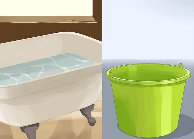 एक छोटा कुत्ता एक स्नान कदम 3 दे दो चित्र