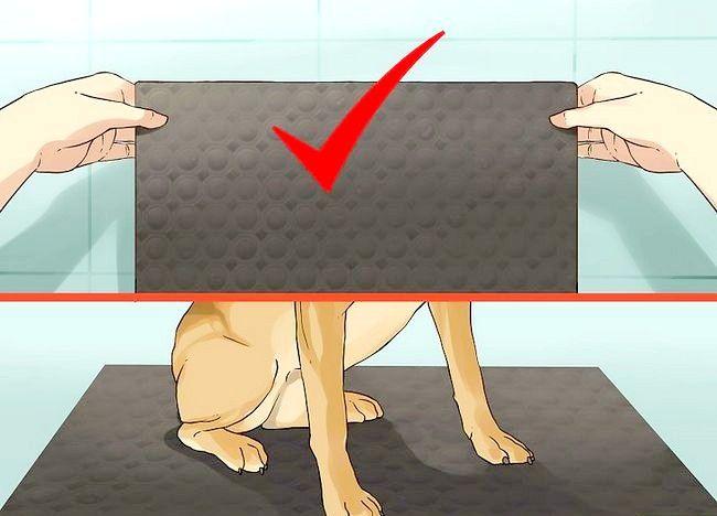 एक छोटा कुत्ता एक स्नान कदम 4 दे दो चित्र