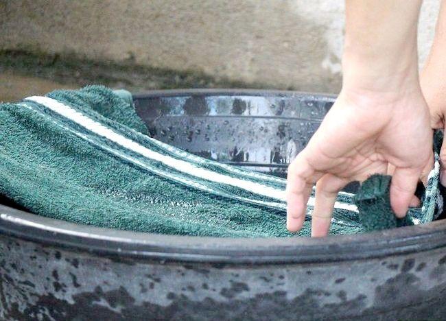 चित्रित करें आपका बड़ा डॉग एक बाथ चरण 3 दें