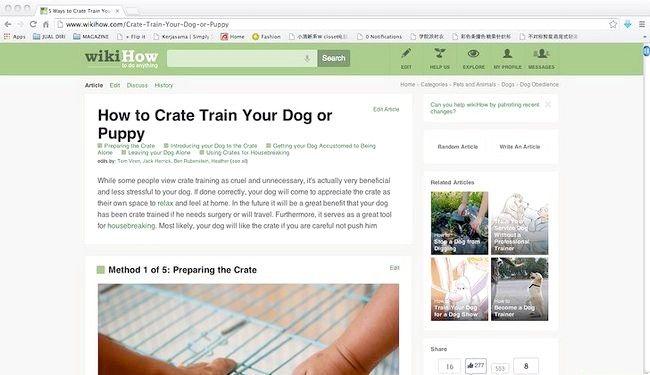 अख़बार को छुटकारा पाने के लिए एक छोटे से कुत्ते को प्रशिक्षित कैसे करें