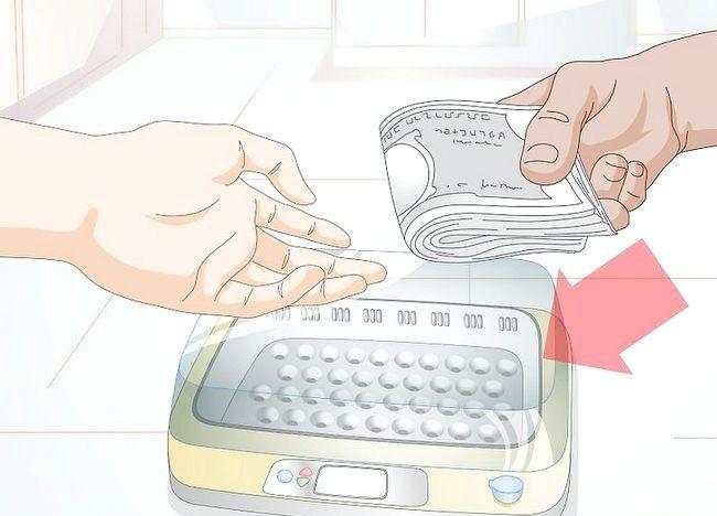 हैच अंडे के लिए इनक्यूबेटर का उपयोग कैसे करें