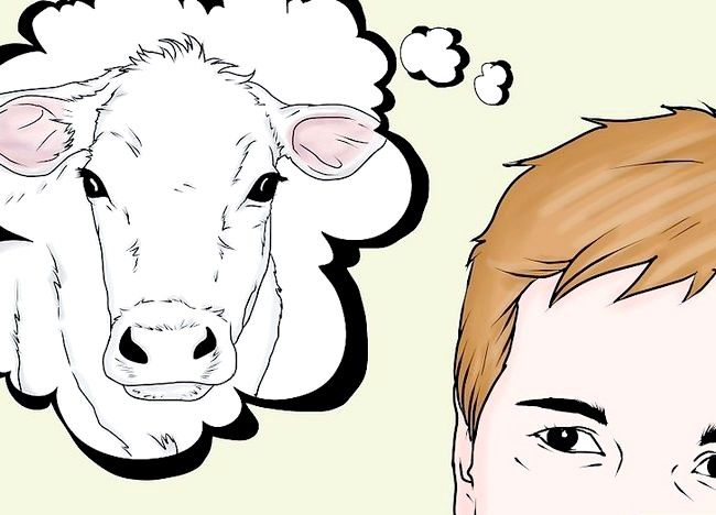 एक गाय का टीकाकरण कैसे करें